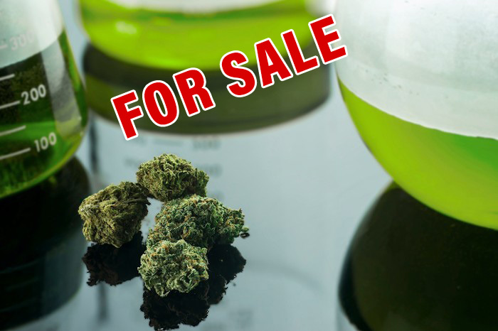 Colorado Cannabis Business for sale